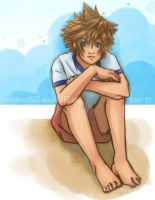 KH. Beach Boy by Littlemoon1502