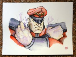 Street Fighter V - Bison / Vega by Shadaloo1989