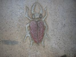 Temple Scarab Relief by disneyland-stock