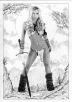 Red Sonja Conan by TimGrayson