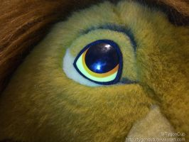 Douglas Simba Eye Repair (Right) by TygonCub