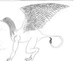 Griffin attempt by DraveDragonheart