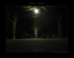 Dark Path by scouros