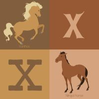 X for Horse by Citron--Vert