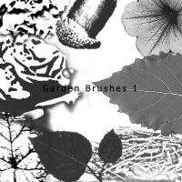 Garden Brushes 1 by wantingtobreakfree