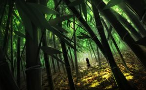 bamboo forest stroll by IluvRice