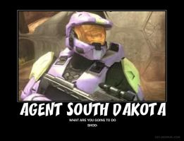 Agent south by Crosknight