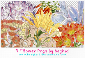 7 Flower Pngs By heykid by heeykiid