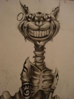 Cheshire Cat Unfinished by animelover4400