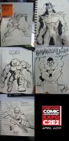 C2E2 2013 sketches by wheretheresawil