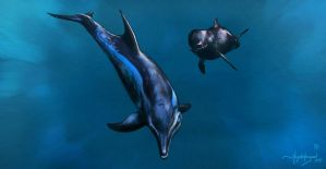 Exciting Time with Whales by Hayatedragoon