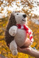 Hand knitted Hector the Hedgehog by Supach