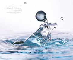 Splash: Chaos II by MichelleRamey