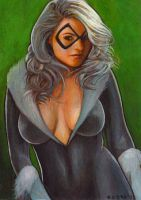 Black Cat 158 by charles-hall