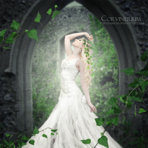 English Ivy by Corvinerium