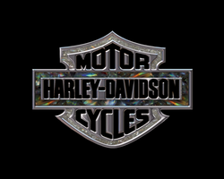 My Harley-Davidson Tribute by trid2bnrml