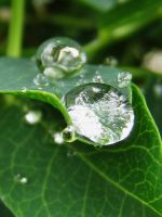 waterdrops 3 by GreenMusic