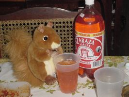 The Squirrel and his drink by KiYtZiA