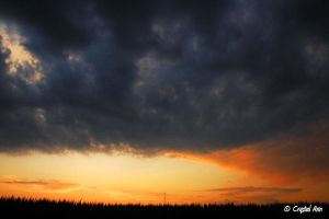 Sunset in the Fields by CrystalAnnPhotos