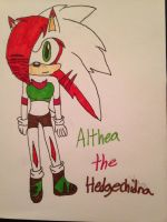 Althea the Hedgechidna by emerswell