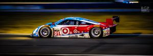 Rolex 24 | Daytona | RGP6564 by scarcrow28