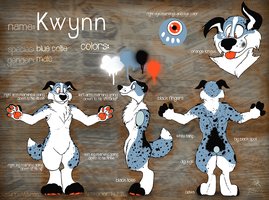 Kwynn reference sheet by Grion