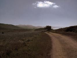 Point Reyes Edit by MrSlowNiko