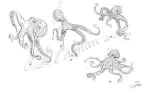 Octopus Designs by davidsdoodles