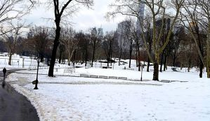 A grey and white day in Central Park by TheLifeOfRick