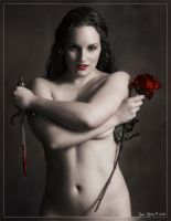 Blood and Roses by RyanHeffron