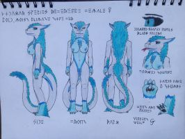 Hydrakar Species Female Reference by Vincent-Wullf