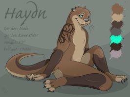Haydn Reference Sheet 2012 by WildTheory