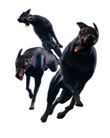 Resident Evil - Zombie Dogs - Render by Allan-Valentine