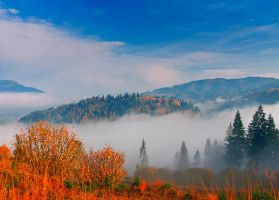 Autumn Mist.2 by lica20