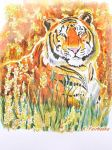 Tiger in a Field (painting) by eyeqandy