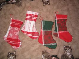Stockings for the Arctic 2007 by crafty-manx