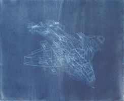 Cyanotype 1: Pelican by OneOfLifesMysteries