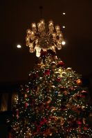Christmas Tree 3 by cynstock