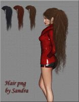 Hair png by manilu