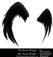The Raven Wings By Denysroquedesign by DenysRoqueDesign