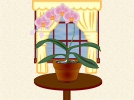 My mother's Orchids by Mallagueta-Pepper