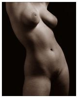 torso by scottchurch