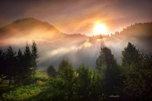 morning fog by hotonpictures