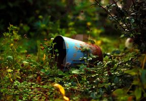 The rusty bucket by flislisan