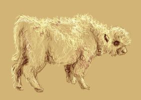 Bison Calf Sketch by studiozoe