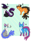 Coral cat auction lot by Sarabikitty