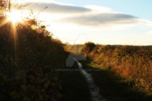 Country path by ulfthewolf