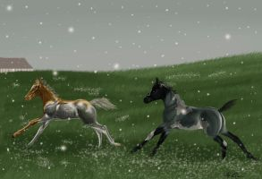 frst snow by fairybloom28