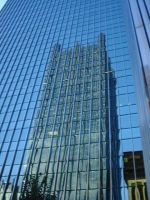 Reflections of PPG by AiPFilmMaker
