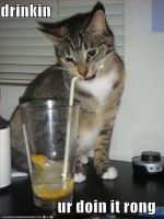 drinkin... ur doin it rong by cianna
